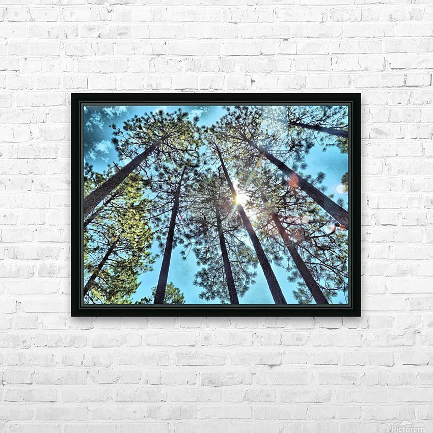 Tree Tops HD Sublimation Metal print with Decorating Float Frame (BOX)