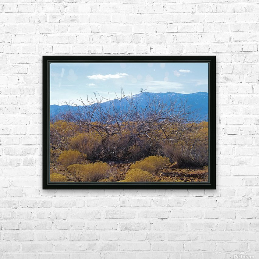 Weeds HD Sublimation Metal print with Decorating Float Frame (BOX)