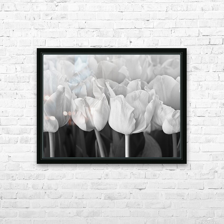 Bunch of Tulips close-up HD Sublimation Metal print with Decorating Float Frame (BOX)