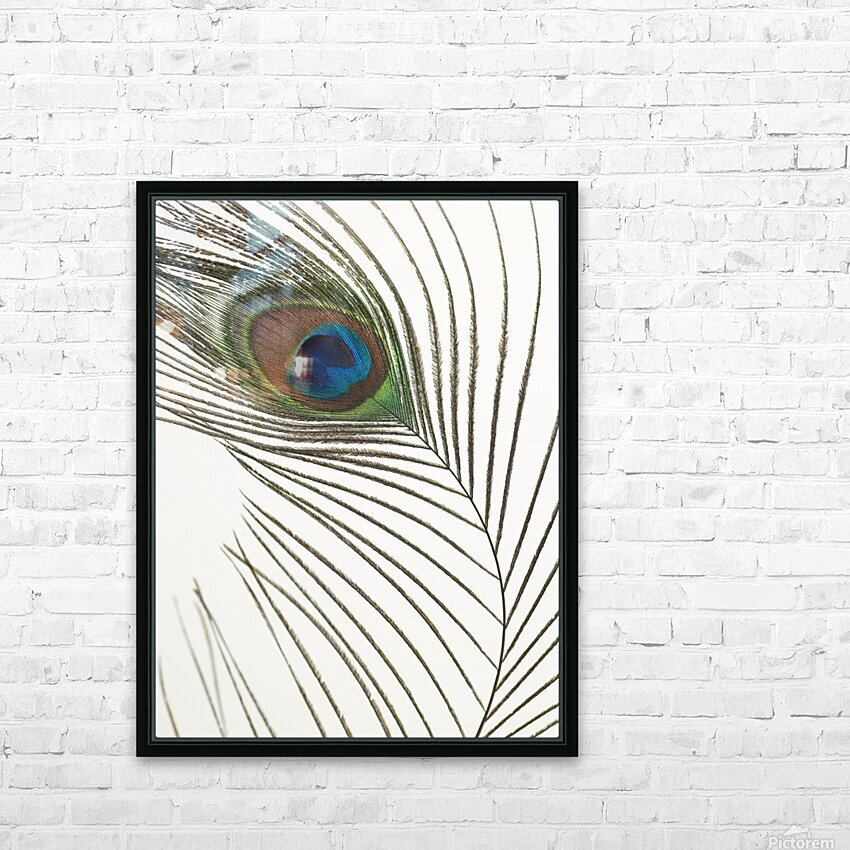 Peacock feather HD Sublimation Metal print with Decorating Float Frame (BOX)