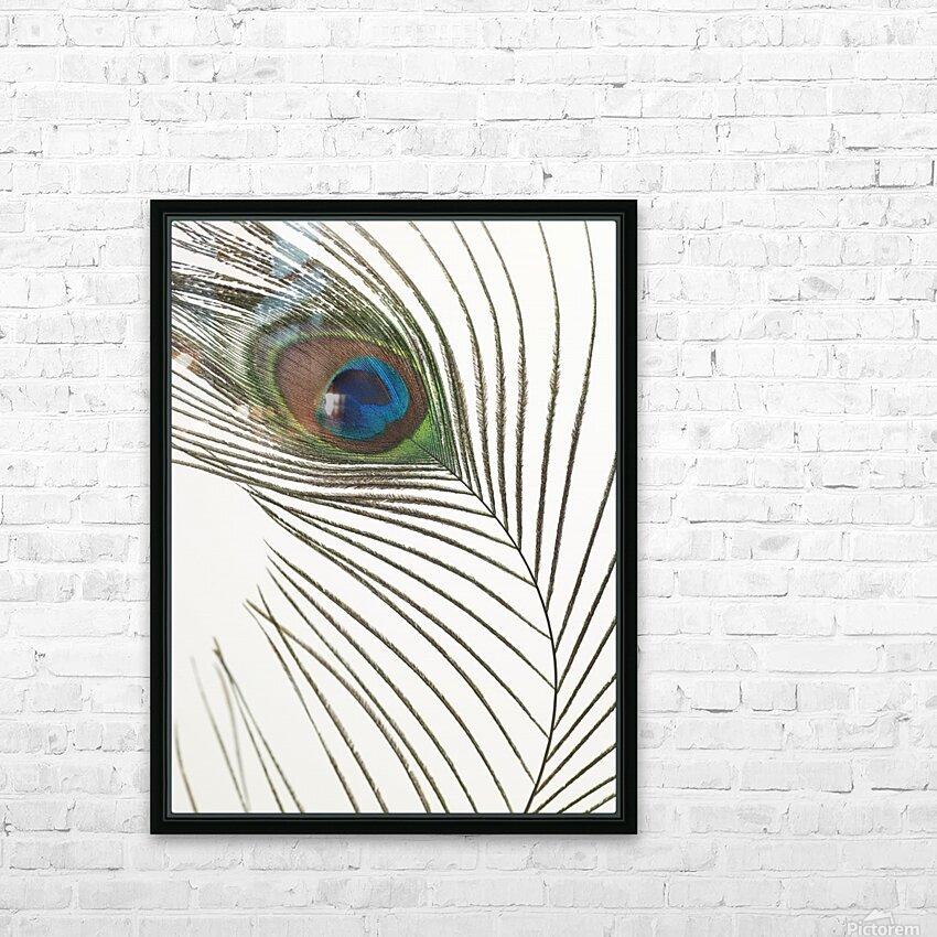 Peacock feather HD sublimation métal imprimé avec décoration flotteur cadre (boîte)