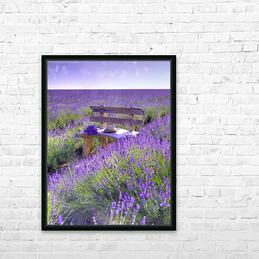 Bench in Lavender field HD Sublimation Metal print with Decorating Float Frame (BOX)