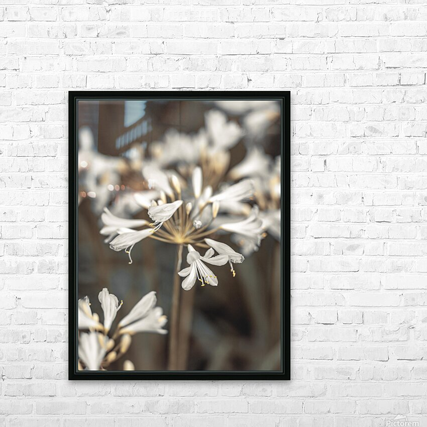 African Lilies HD Sublimation Metal print with Decorating Float Frame (BOX)