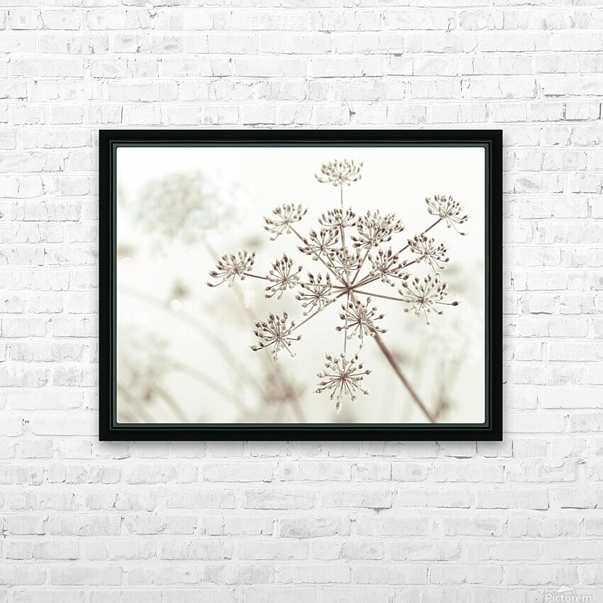 Cow parsley flower HD Sublimation Metal print with Decorating Float Frame (BOX)