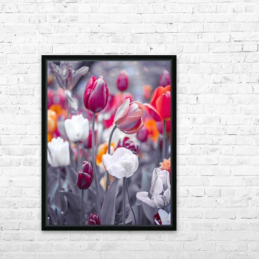 Colorful Tulip flowers HD Sublimation Metal print with Decorating Float Frame (BOX)