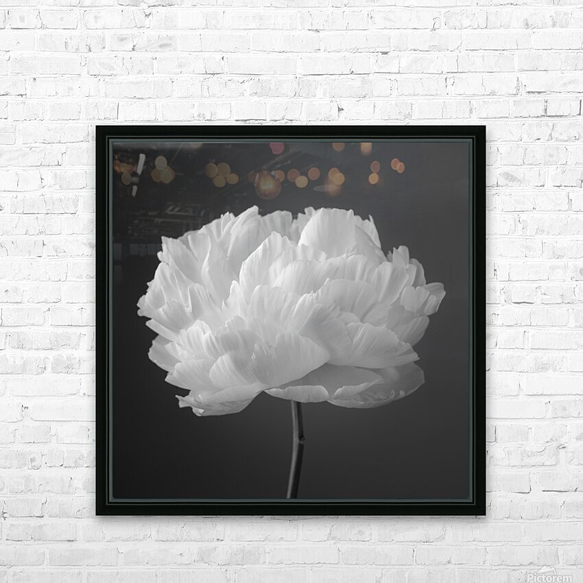 Peony flower HD Sublimation Metal print with Decorating Float Frame (BOX)