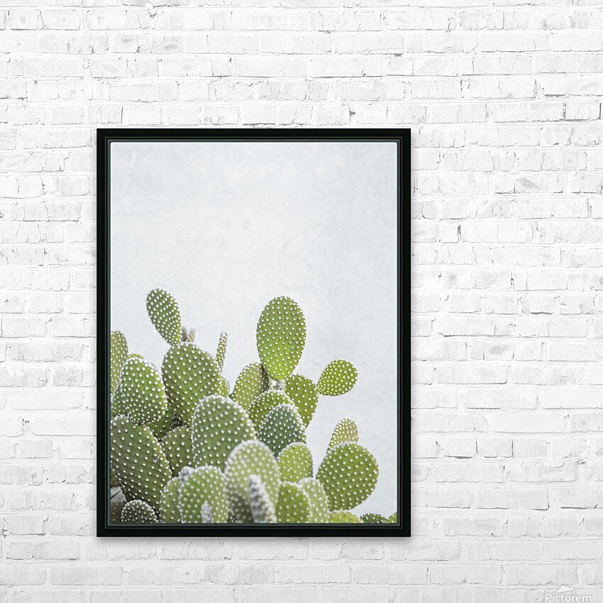 Cactus plant HD Sublimation Metal print with Decorating Float Frame (BOX)