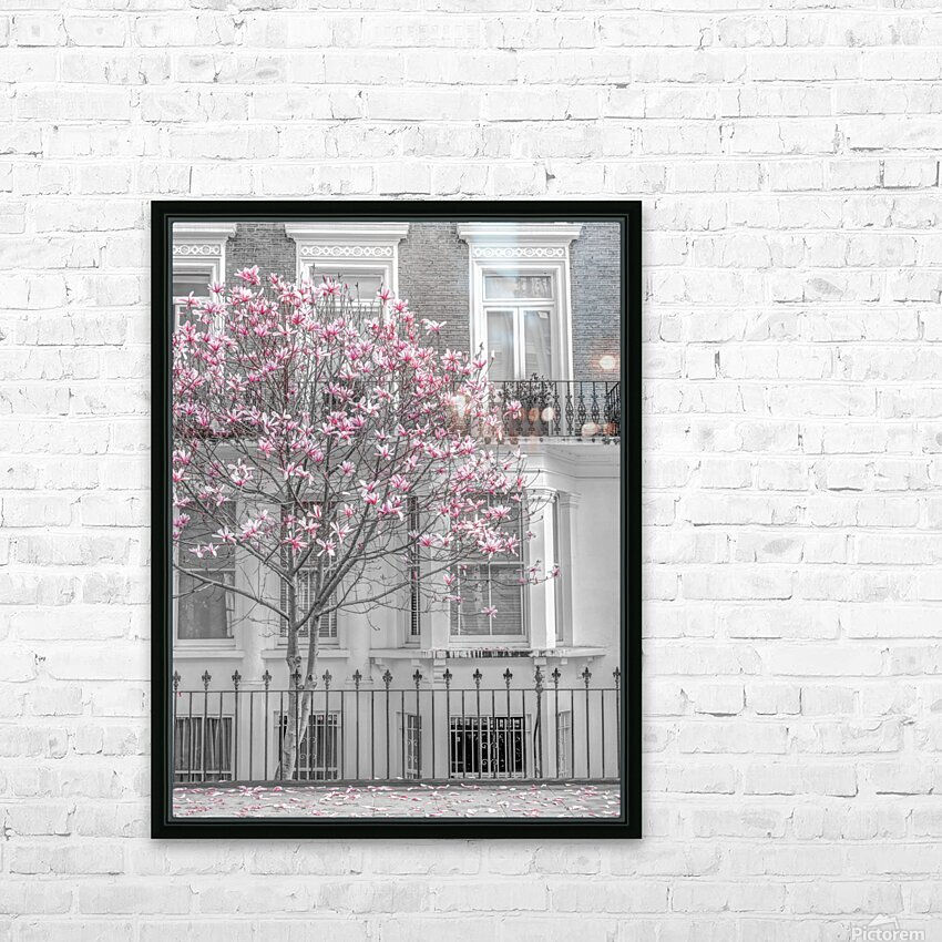 Magnolia tree outside house in London HD Sublimation Metal print with Decorating Float Frame (BOX)