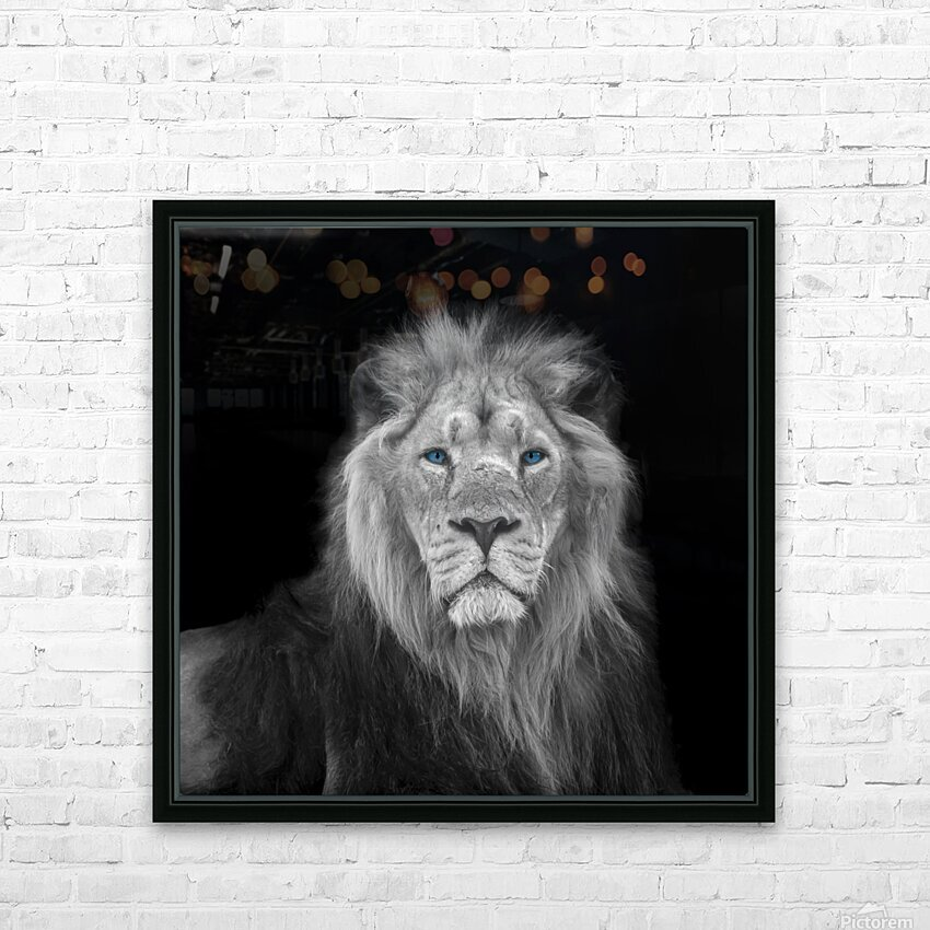 Lion face HD Sublimation Metal print with Decorating Float Frame (BOX)
