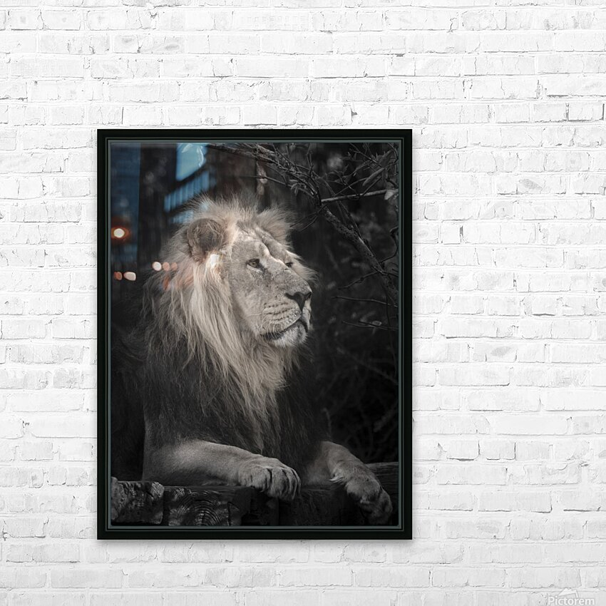 Lion HD Sublimation Metal print with Decorating Float Frame (BOX)