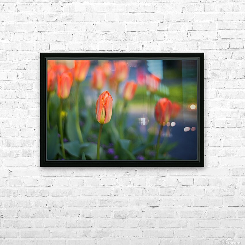 Tulips For You HD Sublimation Metal print with Decorating Float Frame (BOX)