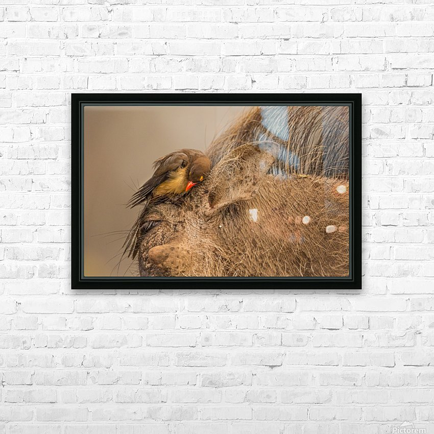 Hideaway by Jaco Marx  HD Sublimation Metal print with Decorating Float Frame (BOX)