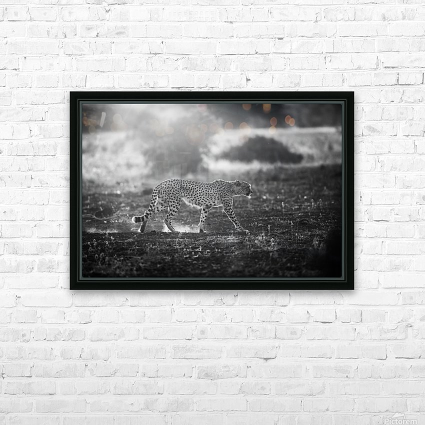 Backlit Cheetah by Jaco Marx  HD Sublimation Metal print with Decorating Float Frame (BOX)