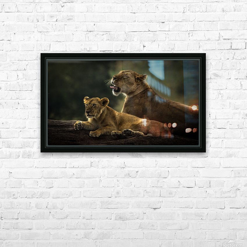 Family by suraj1007   HD Sublimation Metal print with Decorating Float Frame (BOX)