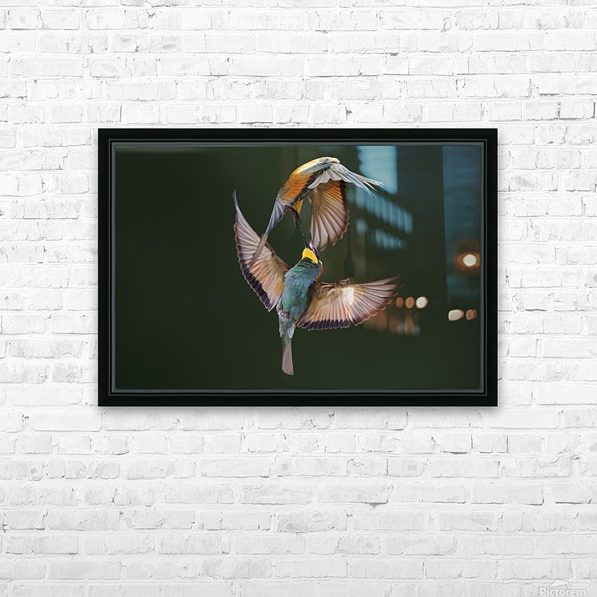 Fight Between Rainbows by Marco Redaelli  HD Sublimation Metal print with Decorating Float Frame (BOX)