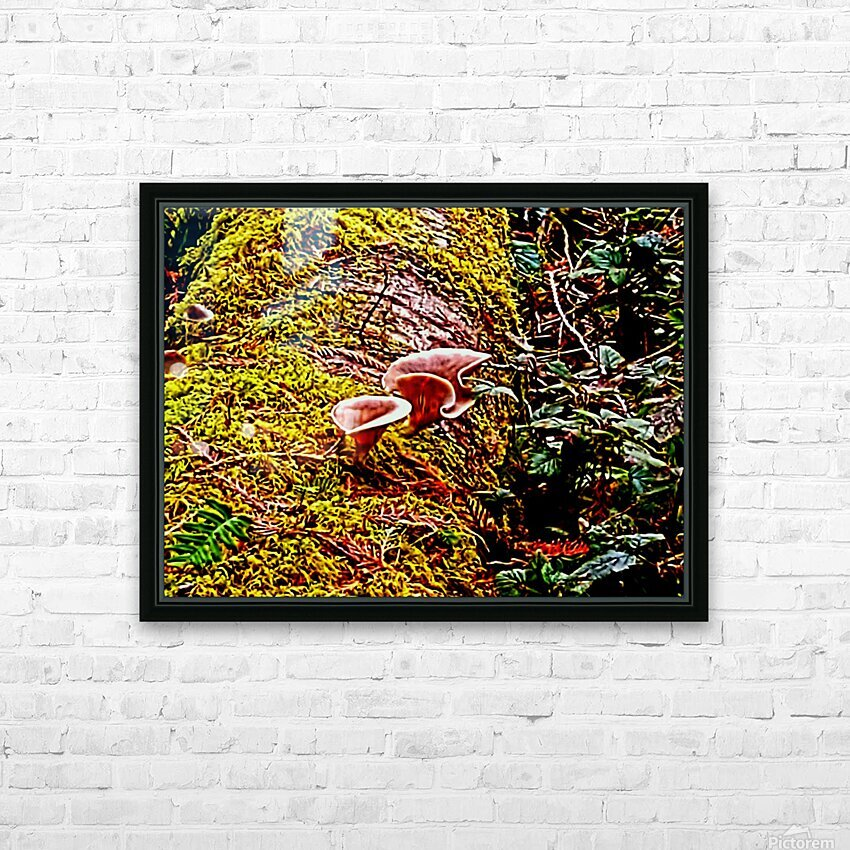 Tiny World 3 of 8 HD Sublimation Metal print with Decorating Float Frame (BOX)