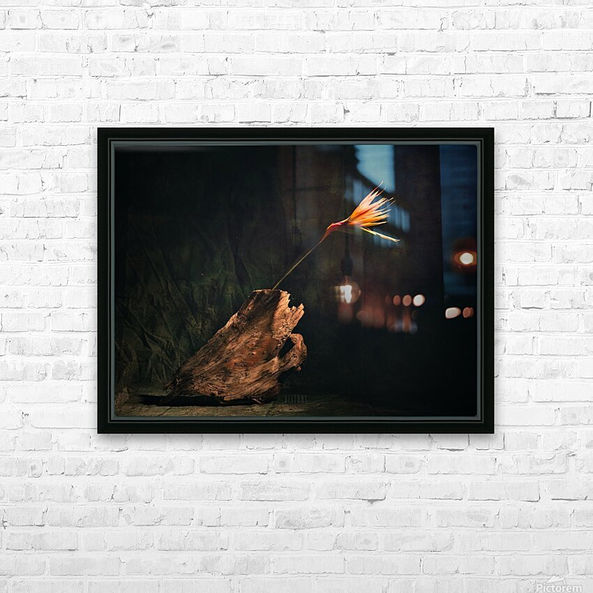 A vol doiseau HD Sublimation Metal print with Decorating Float Frame (BOX)
