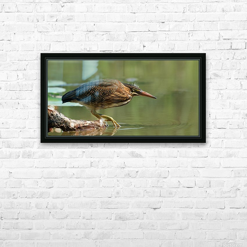 Wading Into The Unknown HD Sublimation Metal print with Decorating Float Frame (BOX)