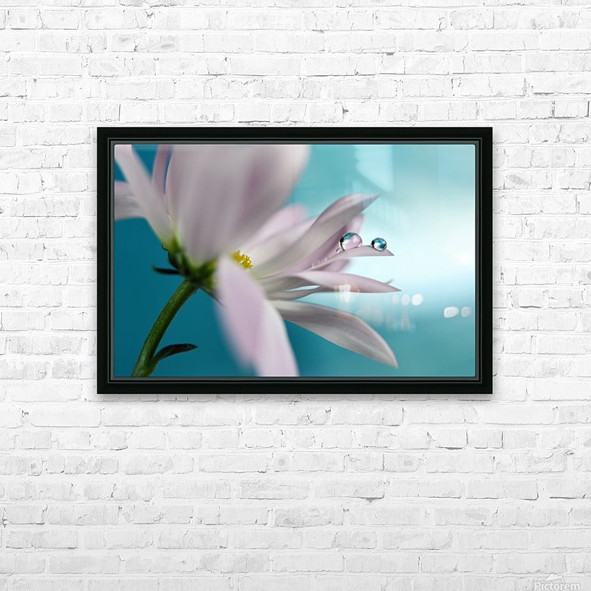 In turquoise Company HD Sublimation Metal print with Decorating Float Frame (BOX)