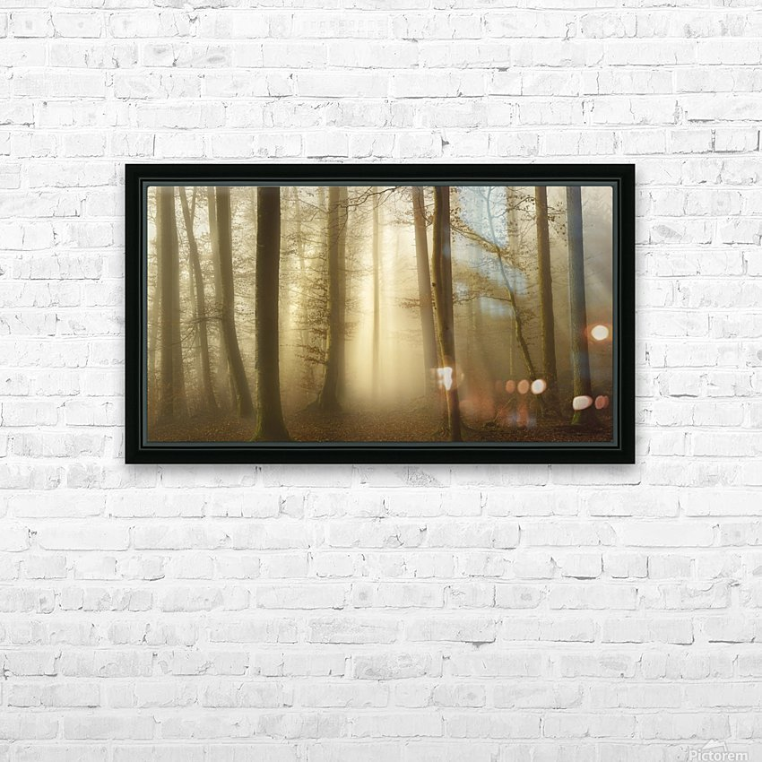 Into the Trees HD Sublimation Metal print with Decorating Float Frame (BOX)
