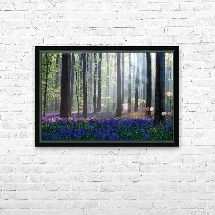 Bluebells HD Sublimation Metal print with Decorating Float Frame (BOX)