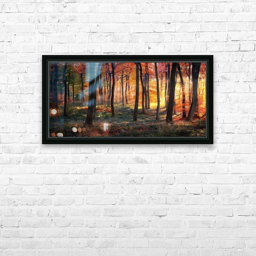 Autumn Woodland Sunrise HD Sublimation Metal print with Decorating Float Frame (BOX)