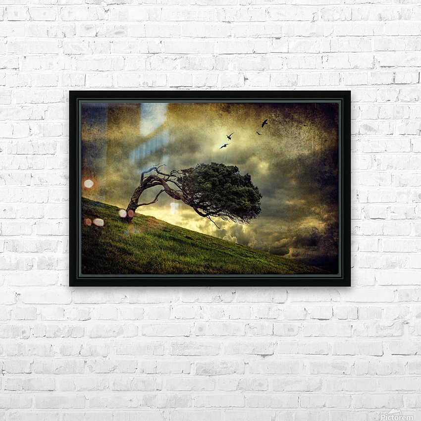 Winds of Change by Peter Elgar  HD Sublimation Metal print with Decorating Float Frame (BOX)