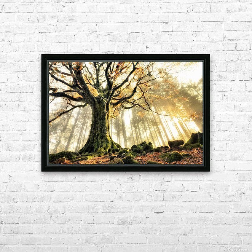 November by Christophe Kiciak  HD Sublimation Metal print with Decorating Float Frame (BOX)