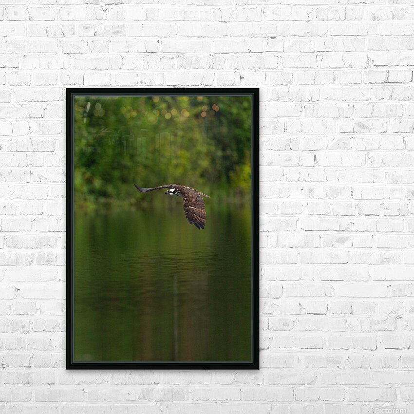 Wesley Allen Shaw 00476 HD Sublimation Metal print with Decorating Float Frame (BOX)