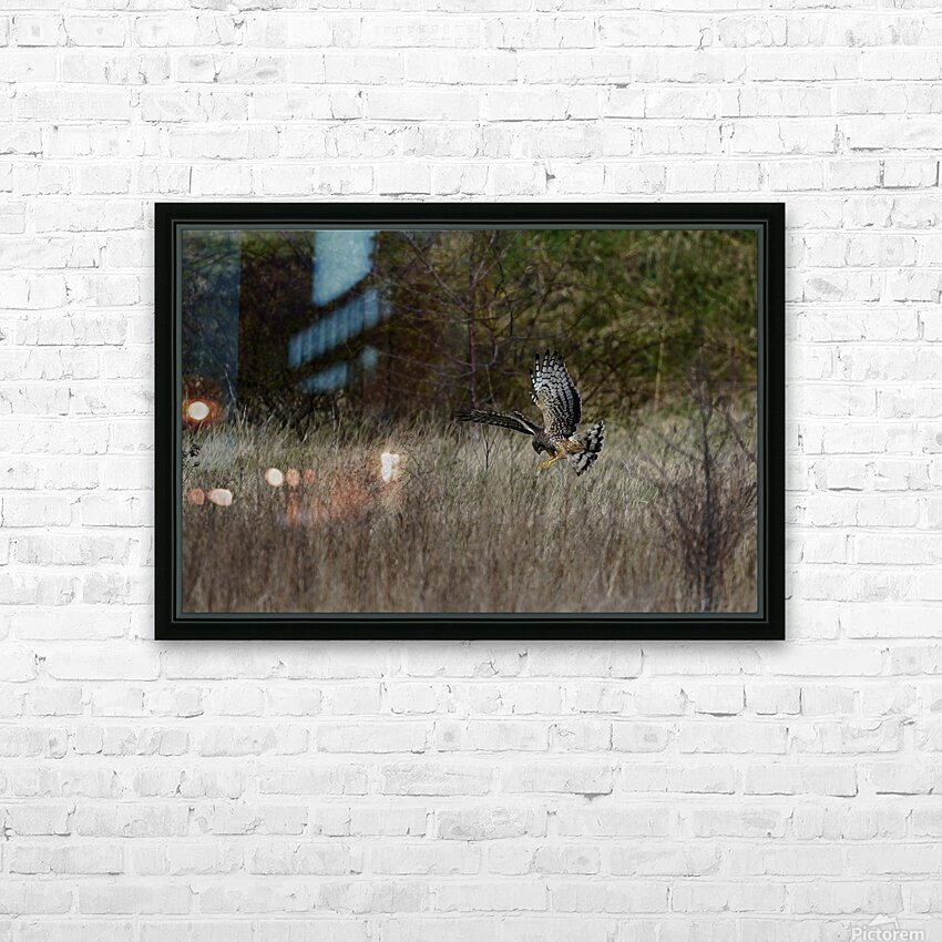 Wesley Allen Shaw 01906 HD Sublimation Metal print with Decorating Float Frame (BOX)