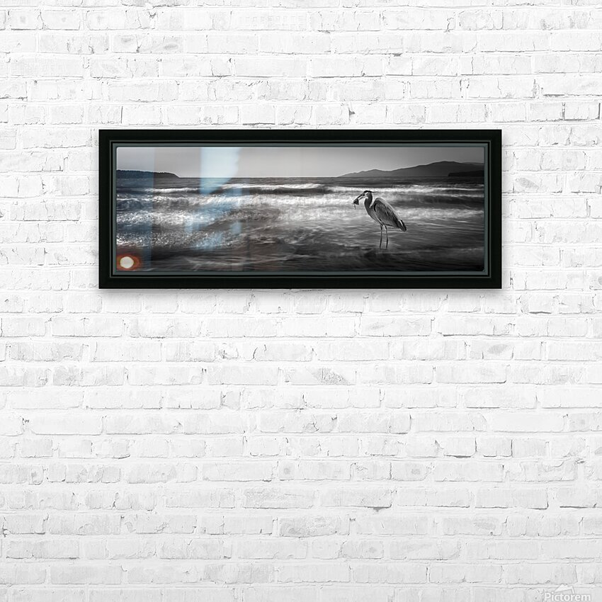 Great Blue Heron HD Sublimation Metal print with Decorating Float Frame (BOX)