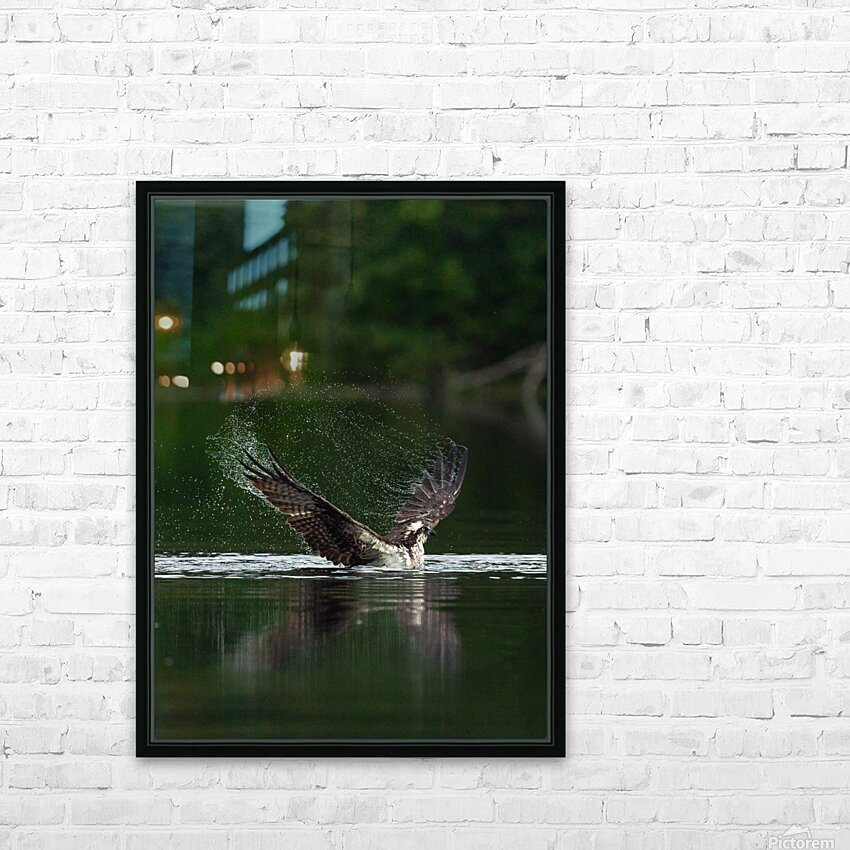Wesley Allen Shaw 01134 HD Sublimation Metal print with Decorating Float Frame (BOX)