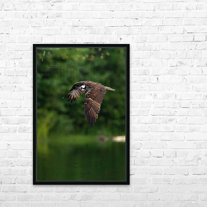 Wesley Allen Shaw 00460 1609734665.9256 HD Sublimation Metal print with Decorating Float Frame (BOX)