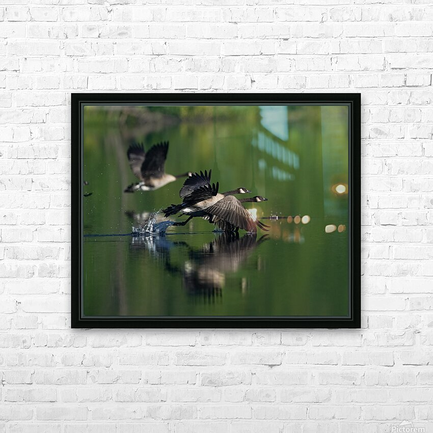 Wesley Allen Shaw 01788 HD Sublimation Metal print with Decorating Float Frame (BOX)