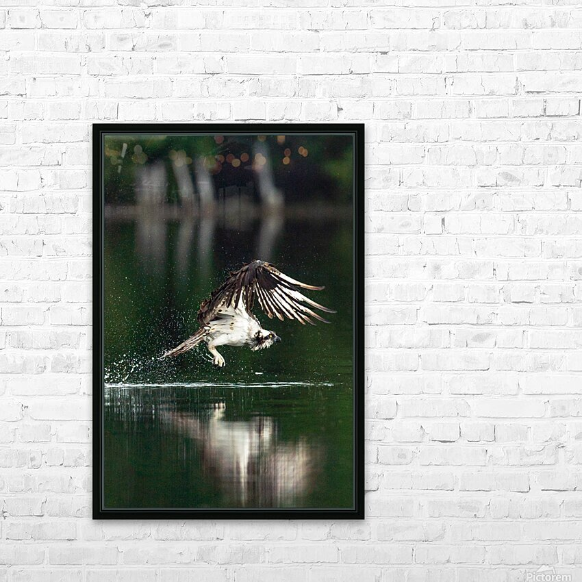 Wesley Allen Shaw 00898 HD Sublimation Metal print with Decorating Float Frame (BOX)