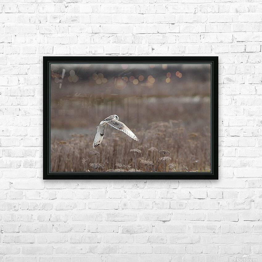 Wesley Allen Shaw 02353 HD Sublimation Metal print with Decorating Float Frame (BOX)