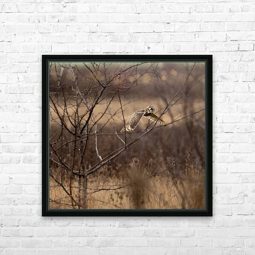 Wesley Allen Shaw 02117 HD Sublimation Metal print with Decorating Float Frame (BOX)