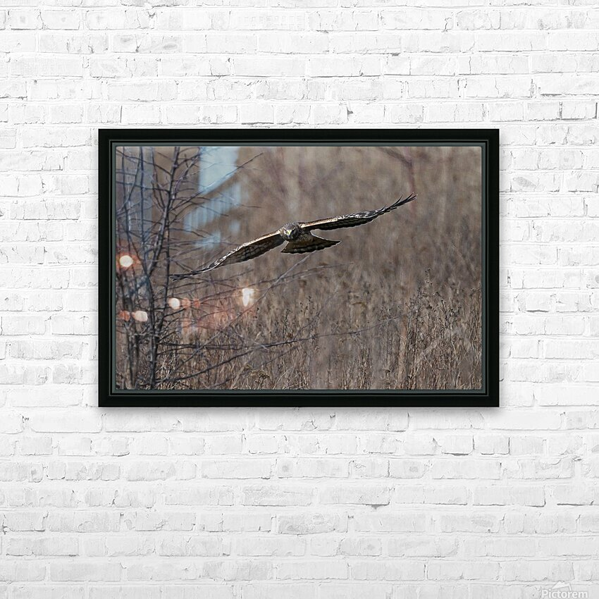 Wesley Allen Shaw 02102 1609734999.9044 HD Sublimation Metal print with Decorating Float Frame (BOX)
