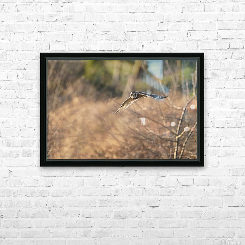 Wesley Allen Shaw 08787 HD Sublimation Metal print with Decorating Float Frame (BOX)
