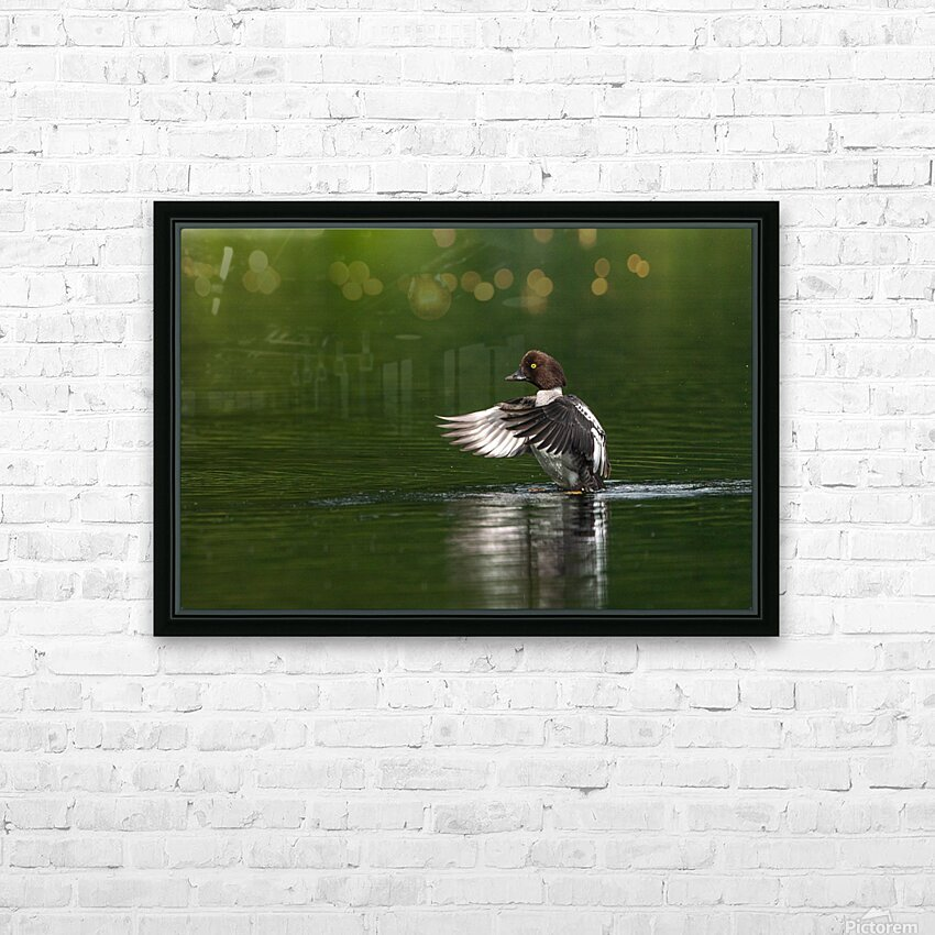 Wesley Allen Shaw 09988 HD Sublimation Metal print with Decorating Float Frame (BOX)