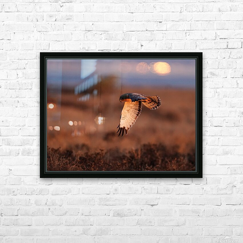 Wesley Allen Shaw 04277 HD Sublimation Metal print with Decorating Float Frame (BOX)