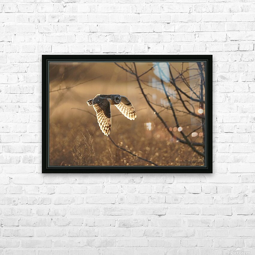 Wesley Allen Shaw 08859 HD Sublimation Metal print with Decorating Float Frame (BOX)