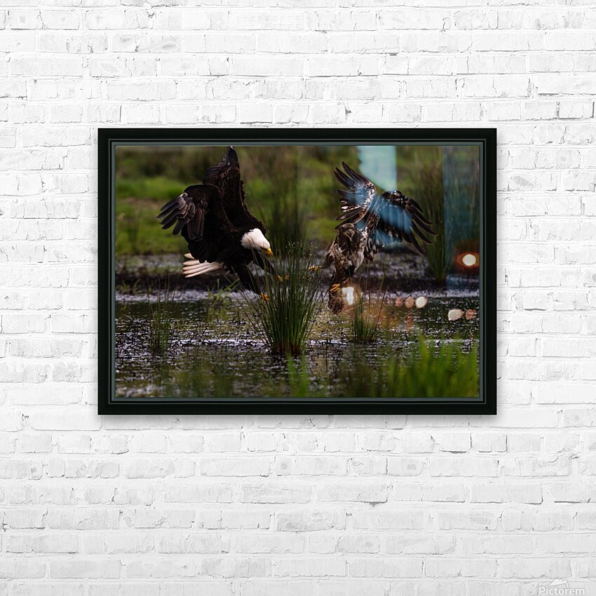 Wesley Allen Shaw 04816 HD Sublimation Metal print with Decorating Float Frame (BOX)