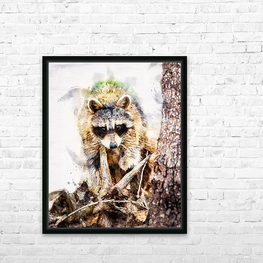 Raccoon In The Woods HD Sublimation Metal print with Decorating Float Frame (BOX)