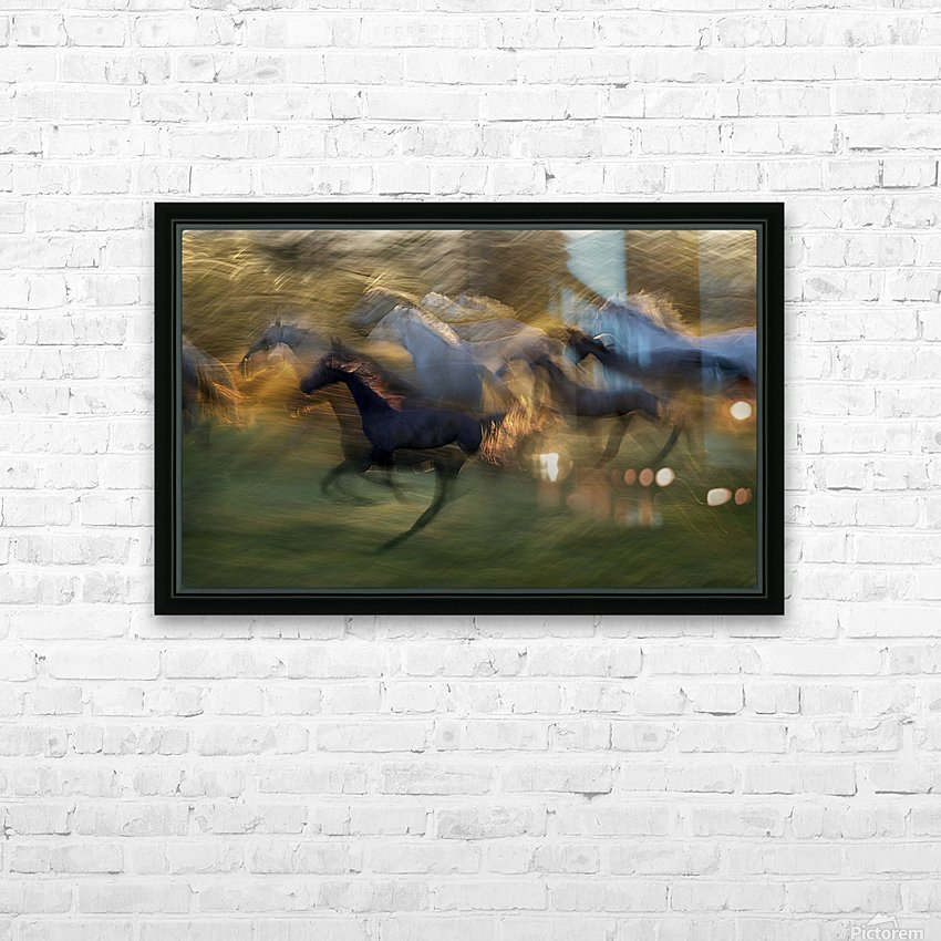 fiery gallop by milan malovrh  HD Sublimation Metal print with Decorating Float Frame (BOX)