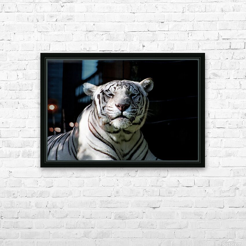 20181104 DSC 0151  3  HD Sublimation Metal print with Decorating Float Frame (BOX)