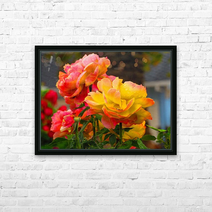 20181121 IMG 2684 HD Sublimation Metal print with Decorating Float Frame (BOX)