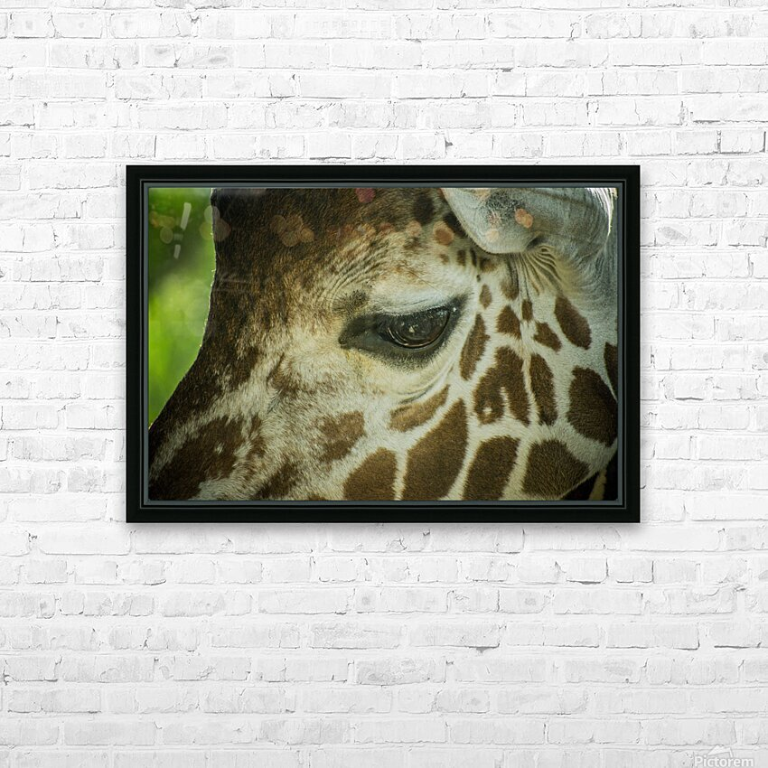 20181104 DSC 0225  3  HD Sublimation Metal print with Decorating Float Frame (BOX)