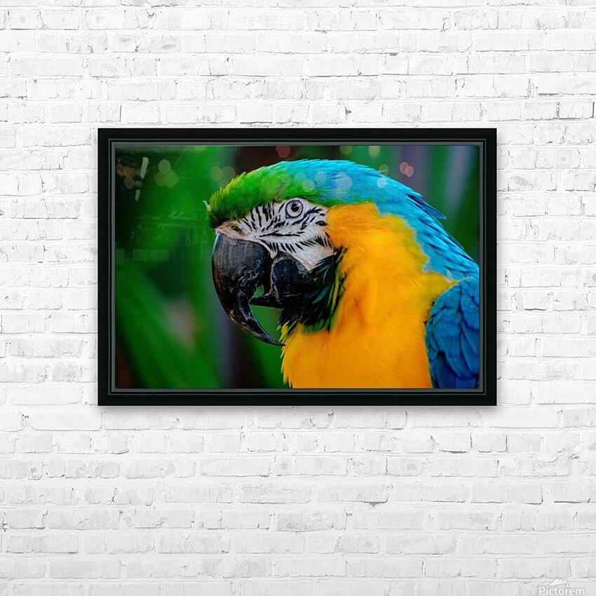 20181021 DSC 0292  2  1 HD Sublimation Metal print with Decorating Float Frame (BOX)