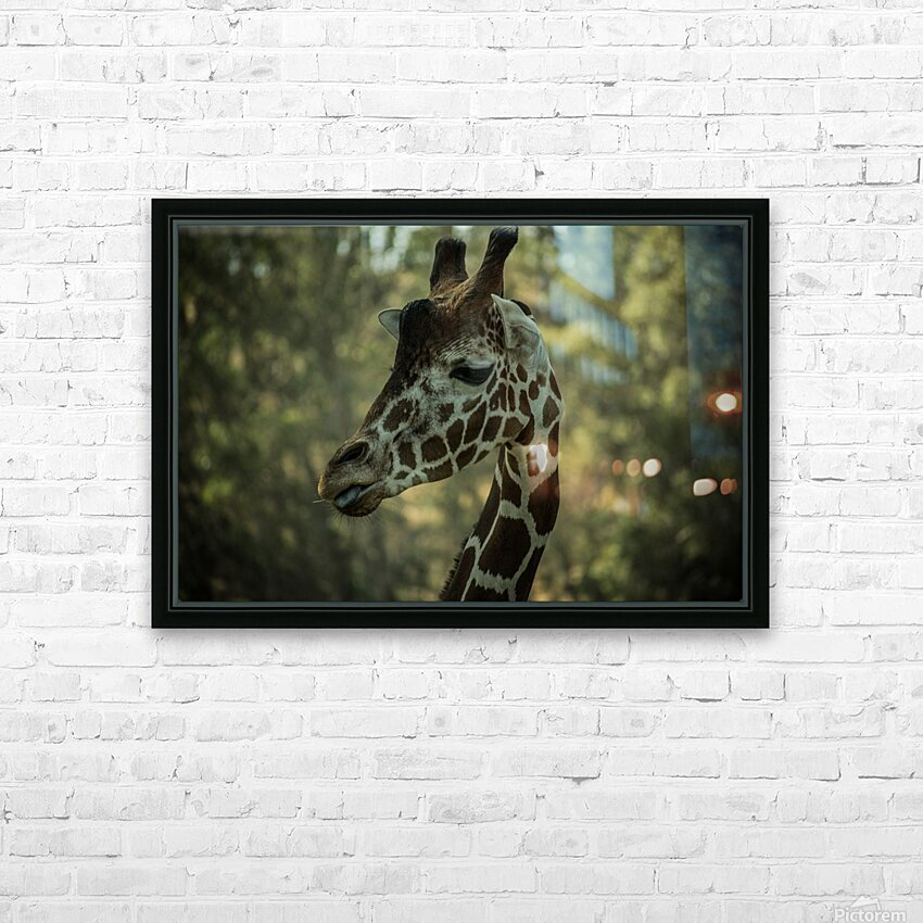 20181104 DSC 0168  3  HD Sublimation Metal print with Decorating Float Frame (BOX)